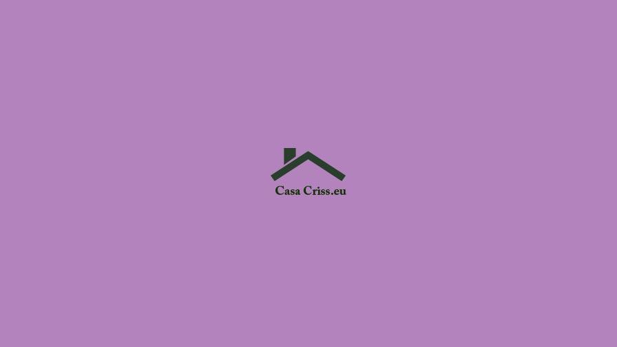 Casa Criss portfolio project