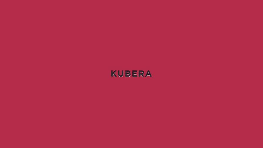 Kubera portfolio project